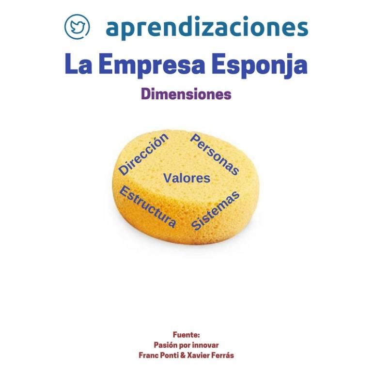 Empresa Esponja - Dimensiones